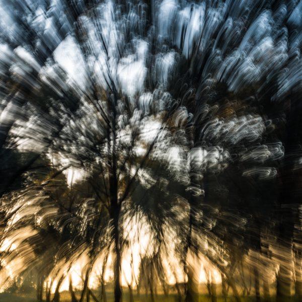 הצילום כראי התקופה / סוזאן סונטאג